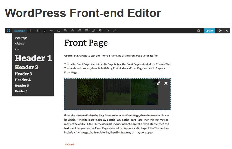 Wordpress Frontend Editor
