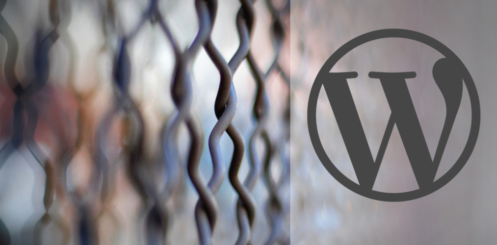 Banking on WordPress: Matt Mullenweg Weighs in on Security Concerns