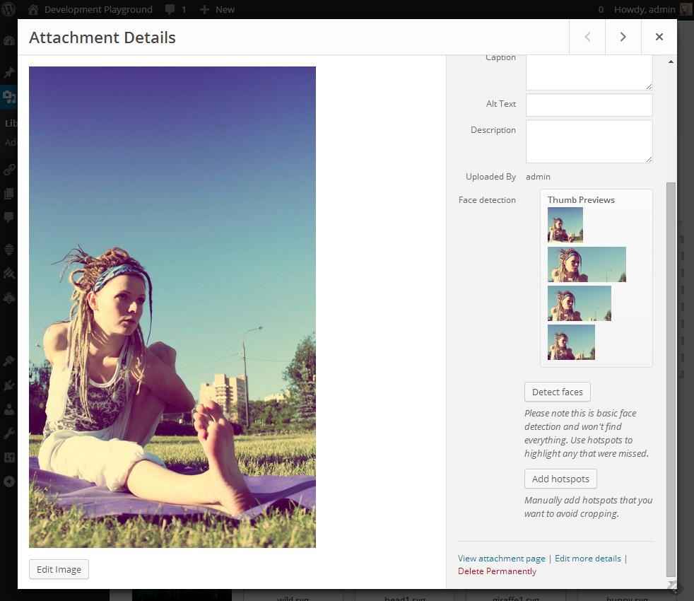 face-detection-attachment-details.jpg
