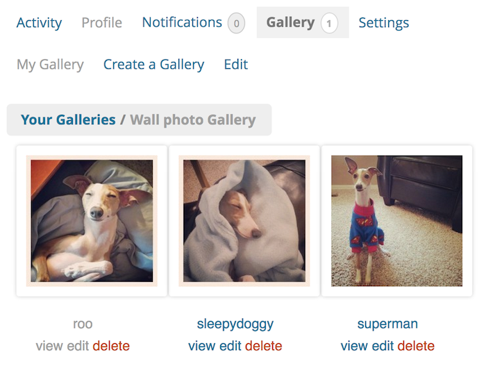 user-galleries
