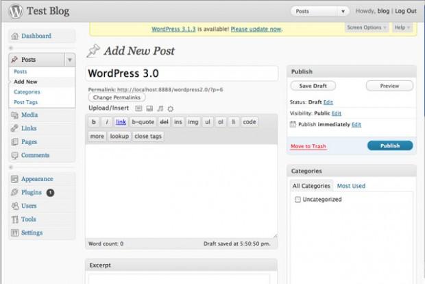 WordPress 3.0 Post Editor Interface