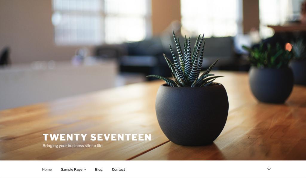 twenty-seventeen-1024x597