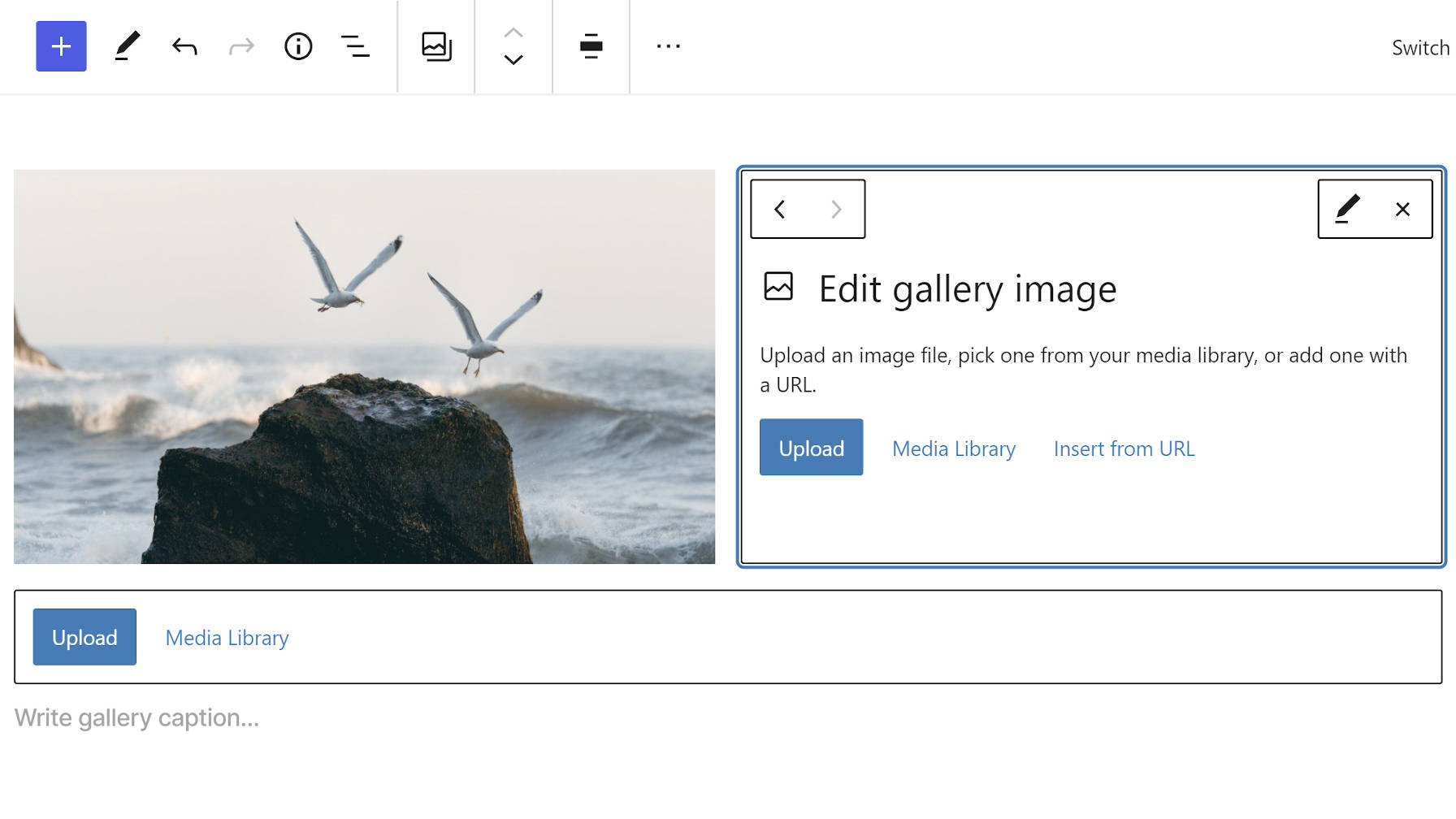 Editing a single gallery image within the block editor.