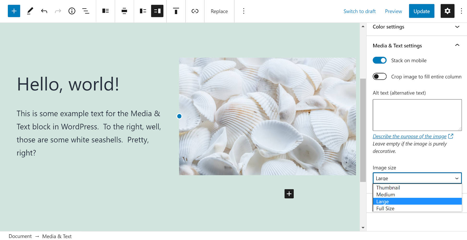 Media & Text block in the WordPress editor.