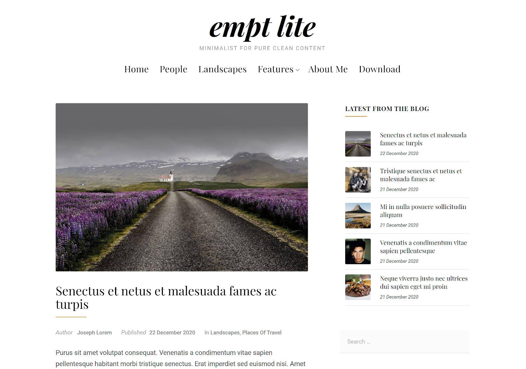 Single blog post view when using the Empt Lite WordPress theme.