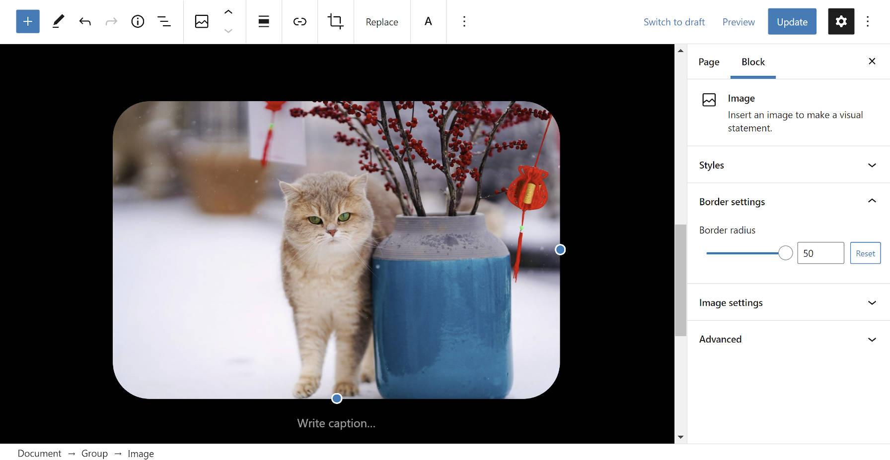Image block in the WordPress editor with border radius setting in the sidebar.