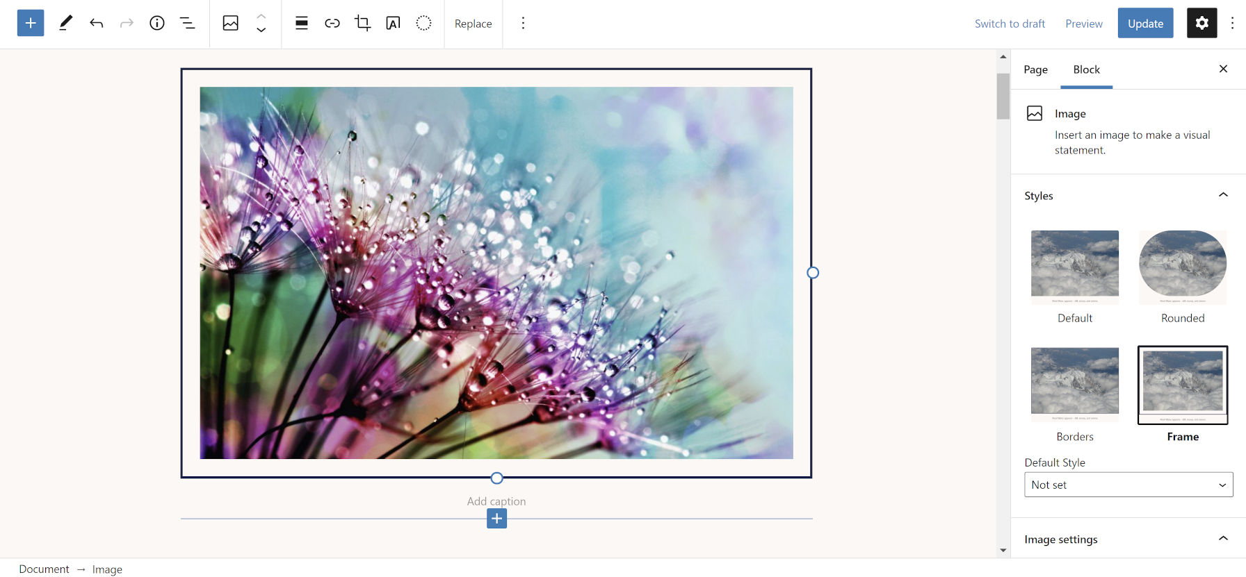 Framed image with black border in the WordPress block editor.