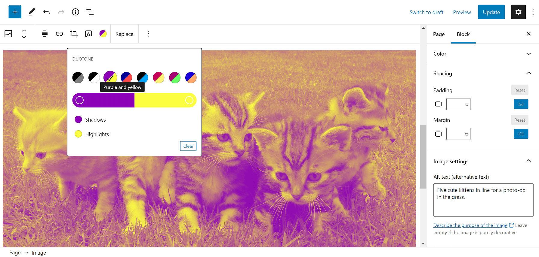 Aggiunta di un filtro a due tonalità viola e giallo sopra l'immagine di gattini in un campo erboso.