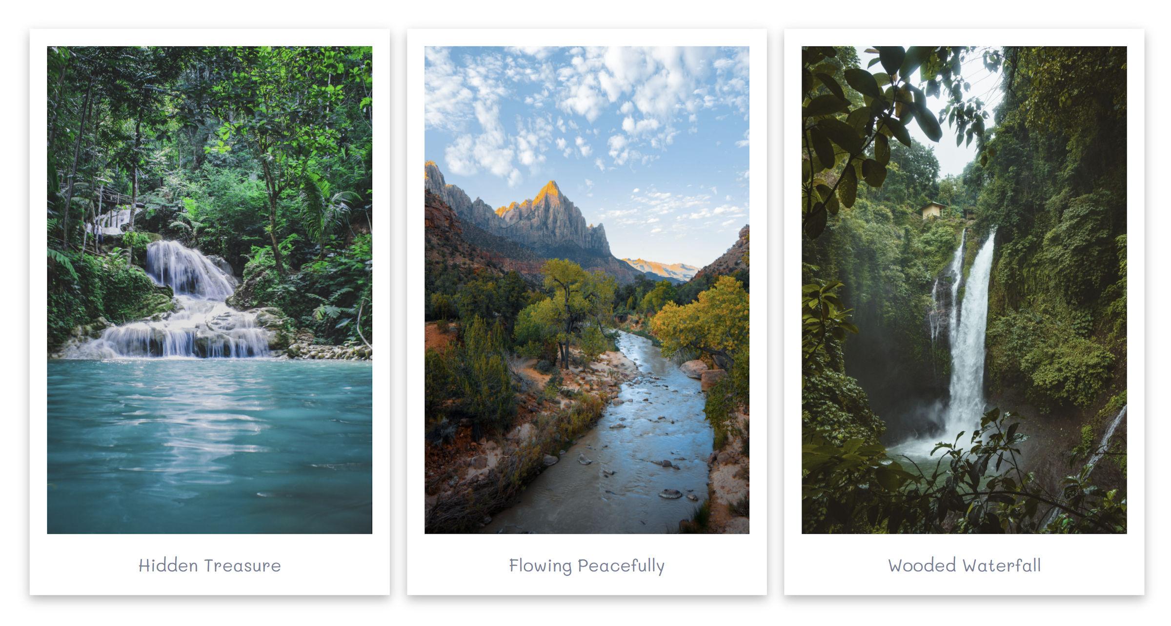 Una cornice in stile Polaroid attorno a tutte le immagini all'interno di una galleria di WordPress.