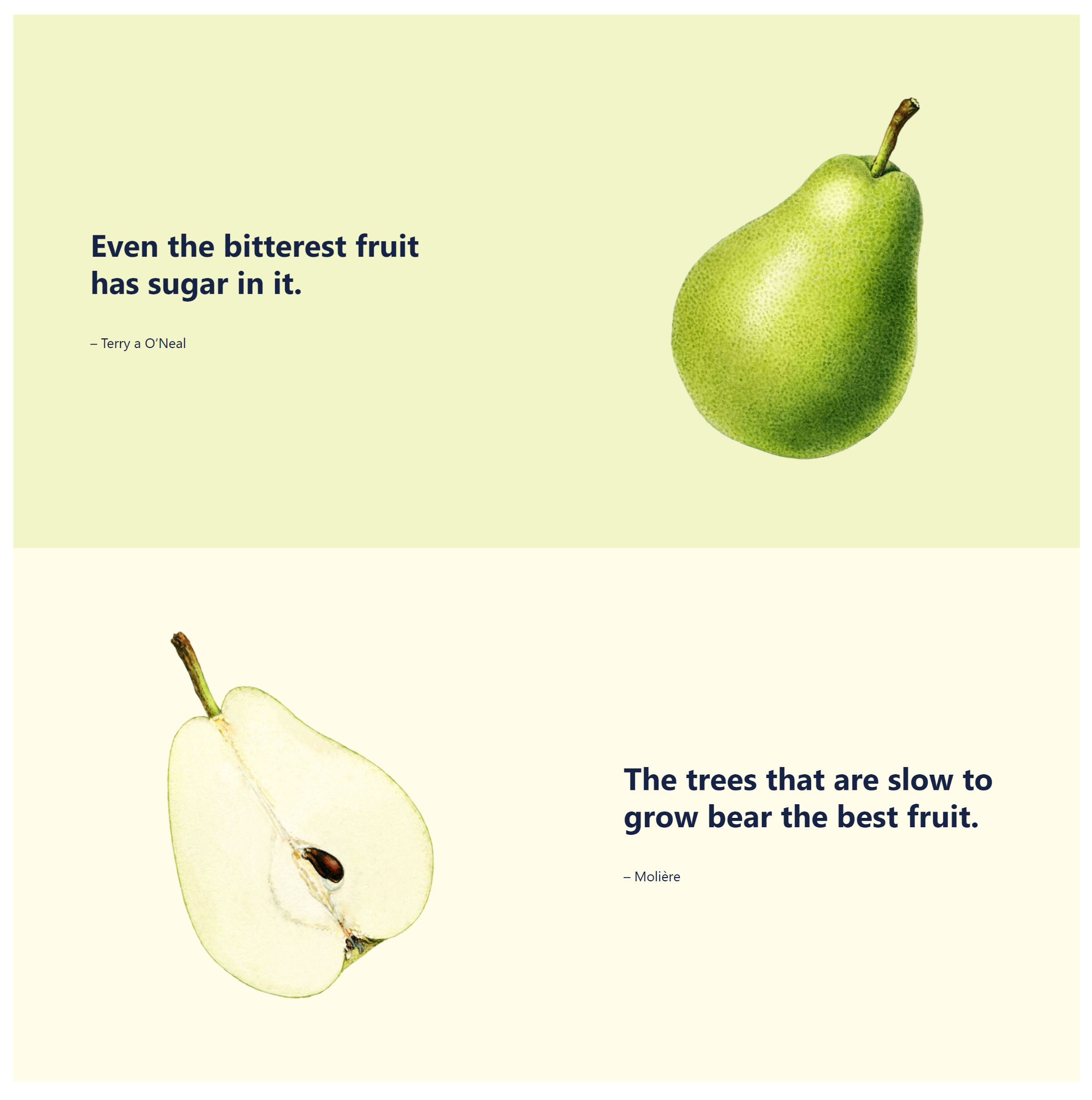 Two sections, each with a fruit and a quote.