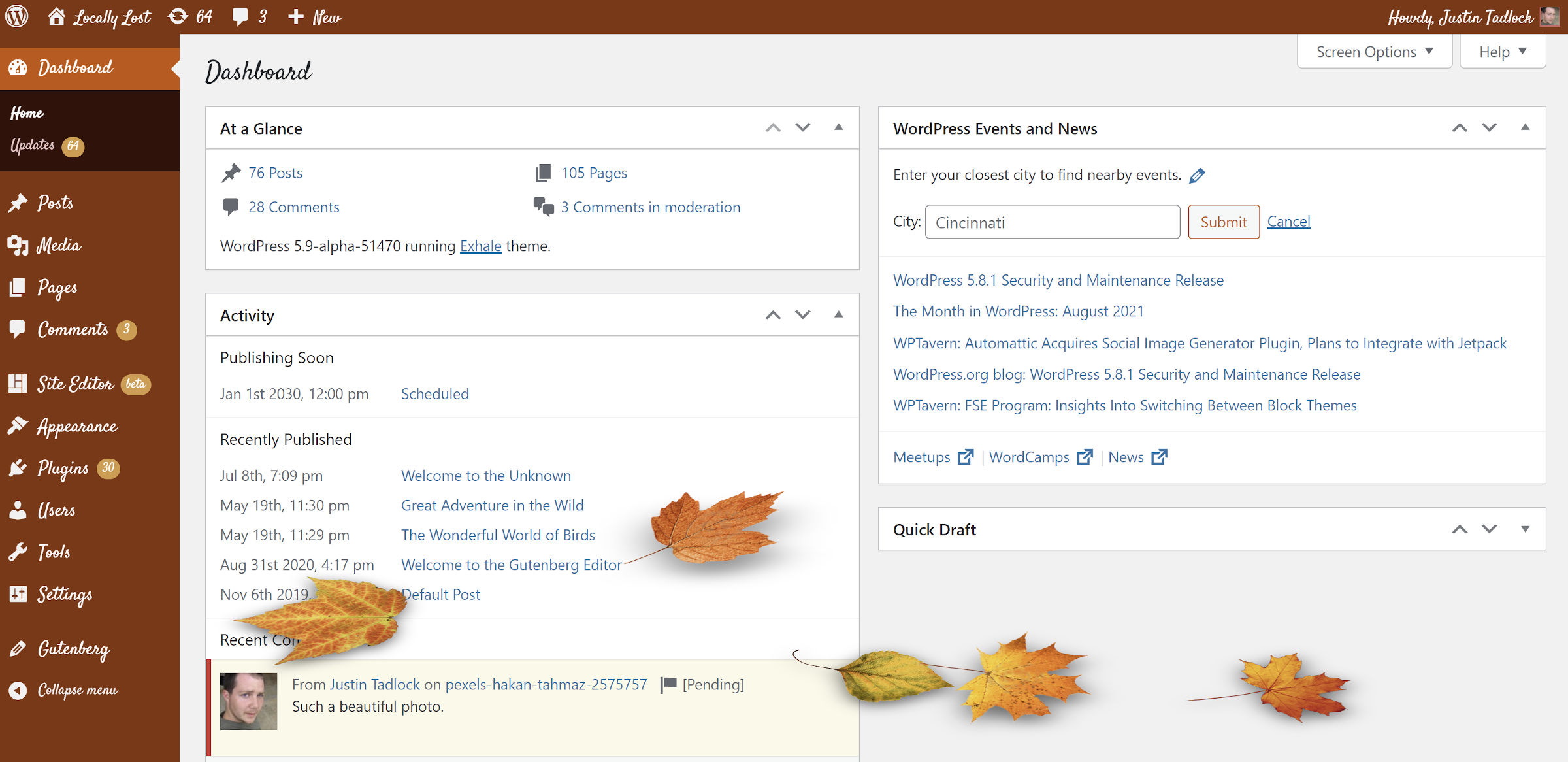 Color scheme of the WordPress dashboard screen when using a pumpkin-spice inspired palette.