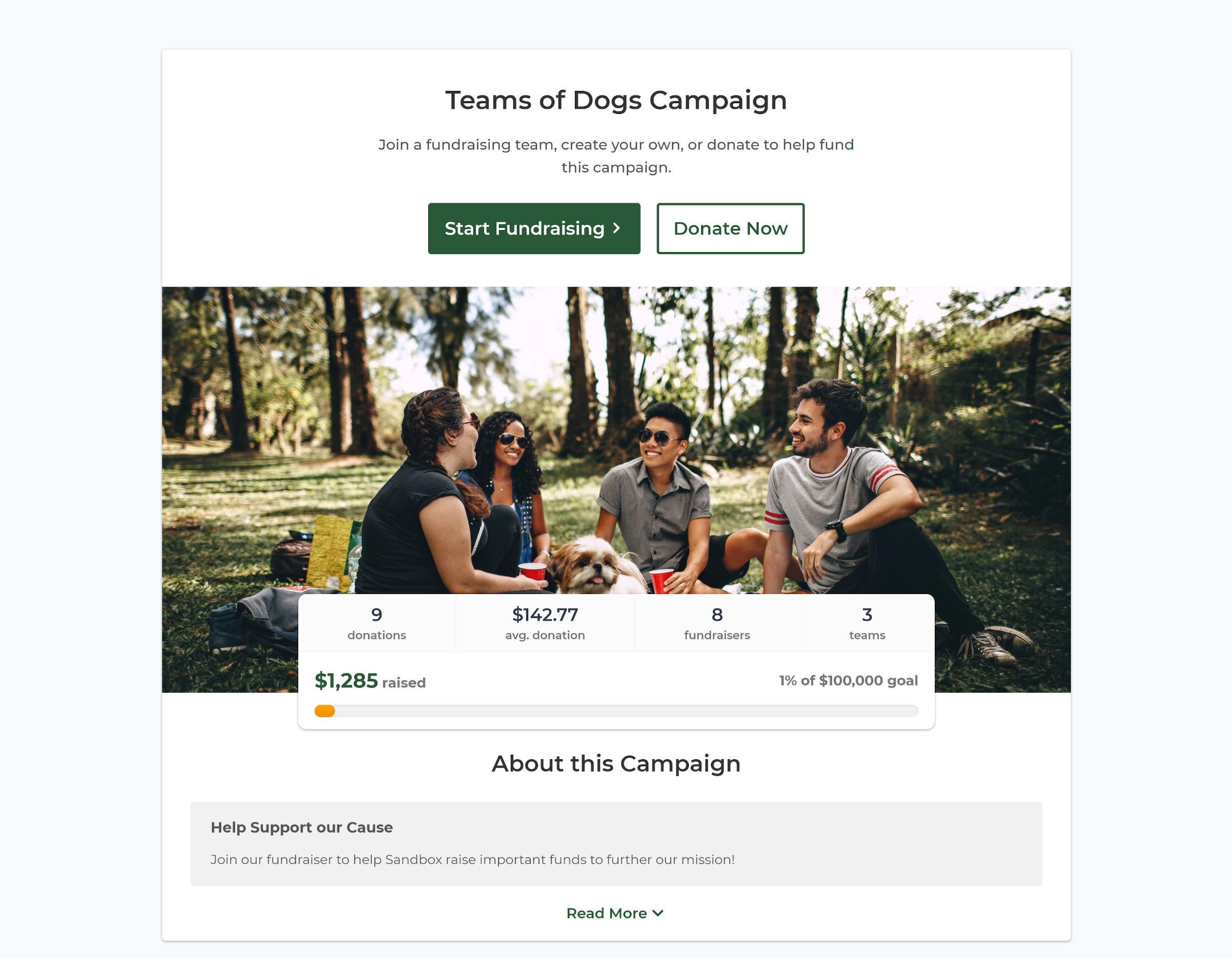 Screenshot di una pagina di raccolta fondi di una campagna P2P che mostra donazioni, importo medio delle donazioni, raccolte fondi e team.